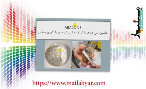 فیلم آموزش پروژه پیش بینی سن آبالون – Age of an abalone + کد متلب